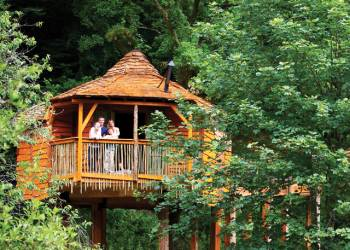 Sherwood Forest Lodges, Sherwood Forest ,Nottinghamshire,England