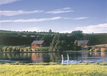 Springwater Lodges